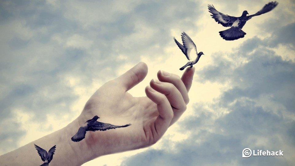 Düşünceler İman İle Vicdani Merhametli Bir Güzelliğe Sahip Değil İse...